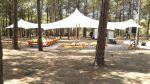 מסיבת_רווקים_ביער